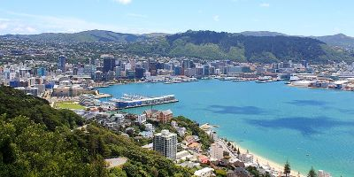 The Top Experiences in Wellington for Summer
